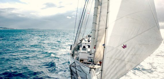 Blue Clipper Bow View