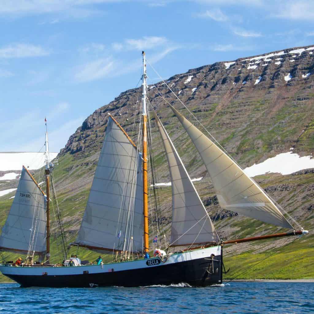 Maria Cerrudo took this amazing picture of Tecla off the shores of Iceland.