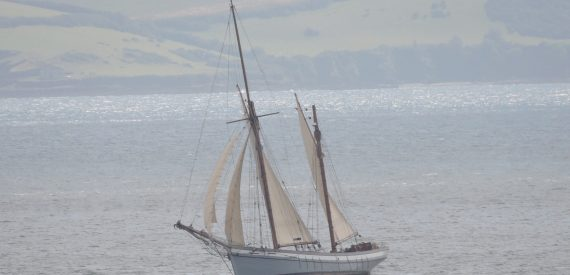 Irene in Falmouth