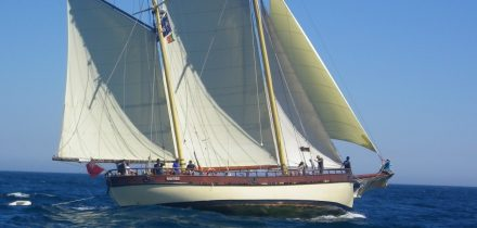 Maybe under sail