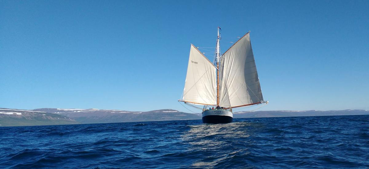 Tecla goose-winging down the Icelandic Coast.