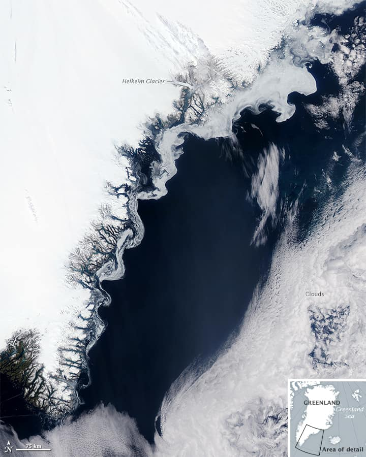 Sea Ice down the East Greenland Coast by NASA Earth Observatory