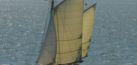 Sailing on Maybe with Classic Sailing