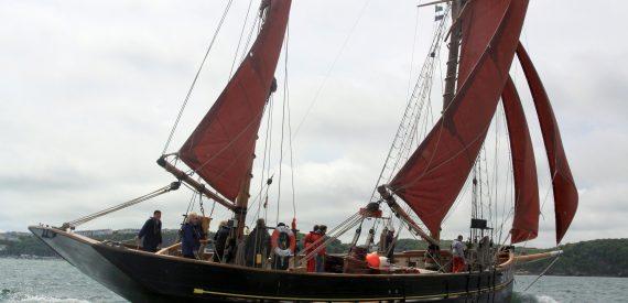 Sailing holidays and short breaks on Pilgrim