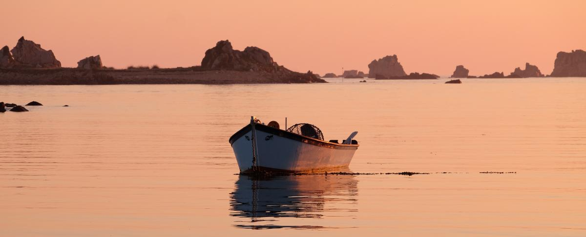 explore the pink granite coast on Morgenster in June 2019