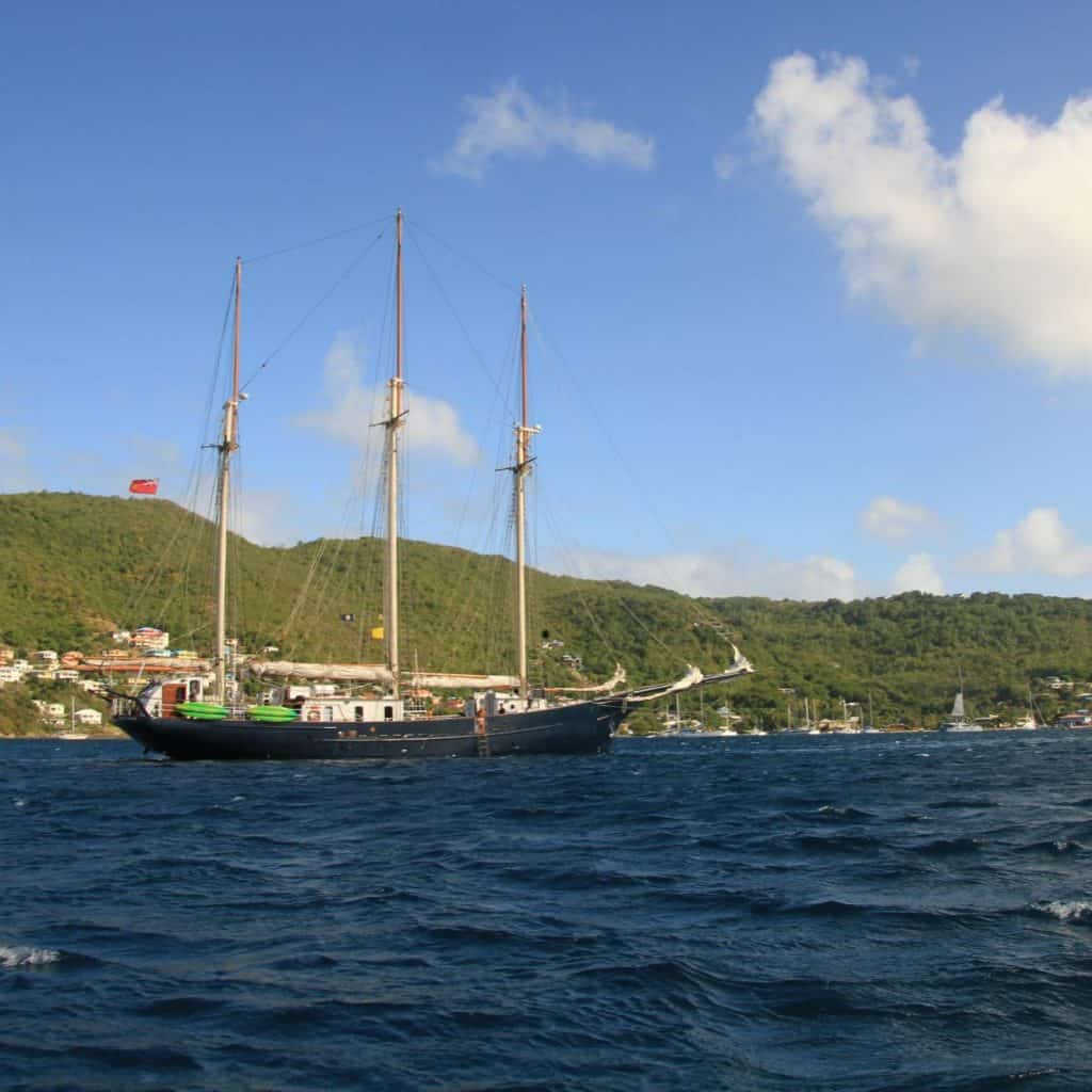 Blue Clipper in Martinique