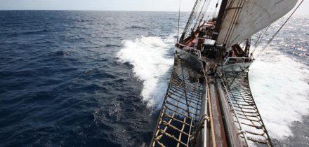 sail om oosterschelde