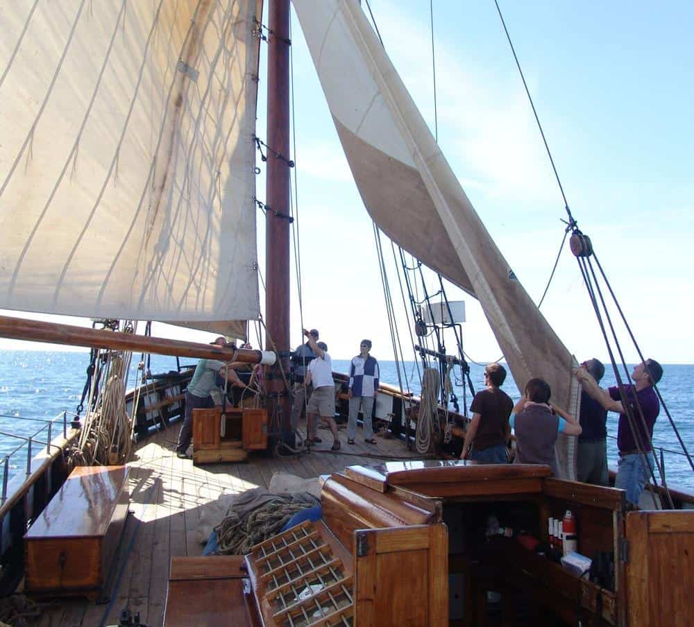 Learning in stages- one sail at a time on Leader