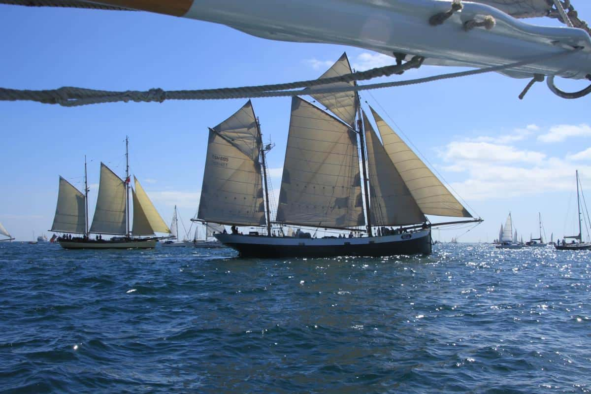 Maybe and Tecla in Tall Ship Parade of Sail