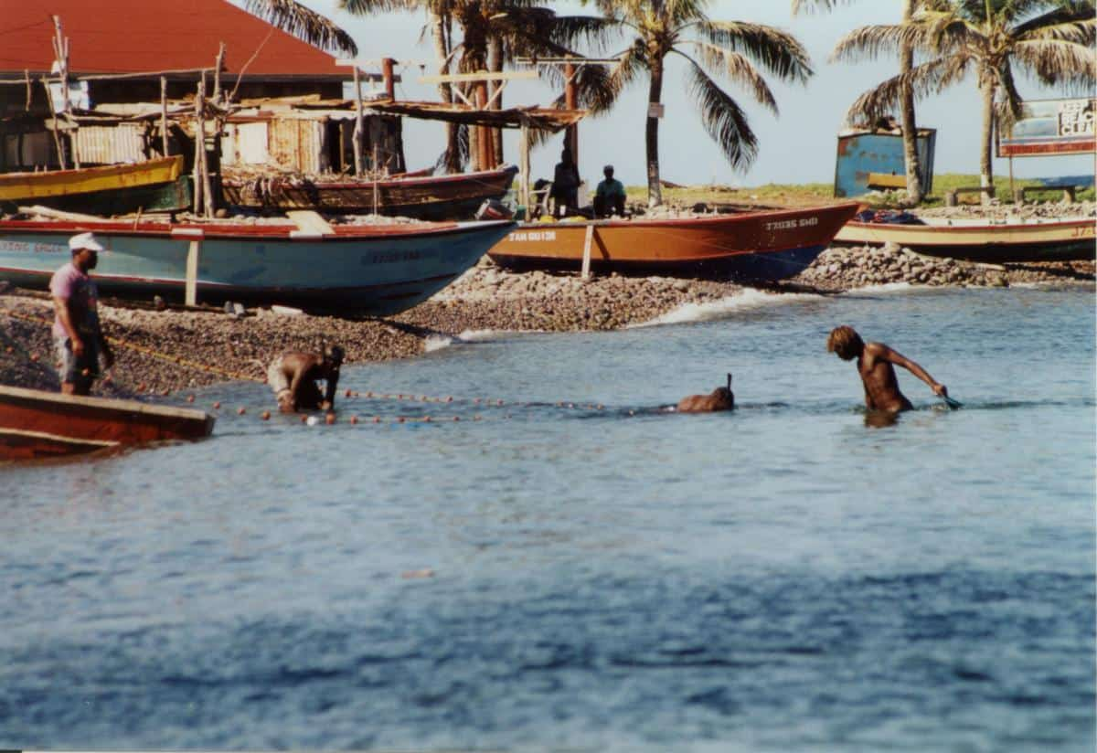 Local Dominican fishermen using dive masks to herd the fish into nets