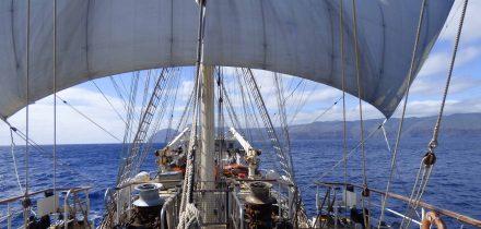 tenacious with Classic Sailing