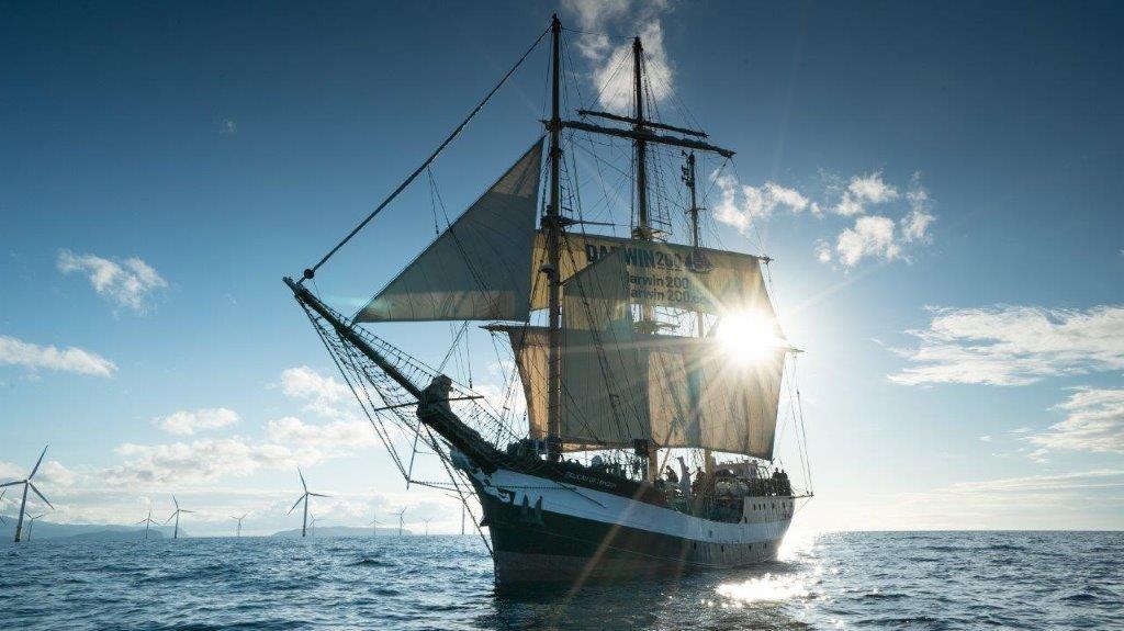 Pelican Darwin 200 with Classic Sailing