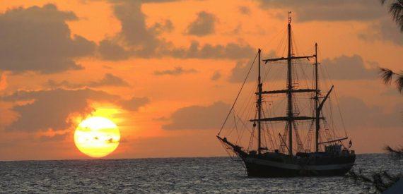 Pelican anchored off the coast