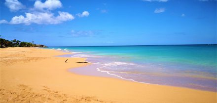 Caribbean Beach - The Caribbean on a Tall Ship Sailing Morgenster with Classic Sailing