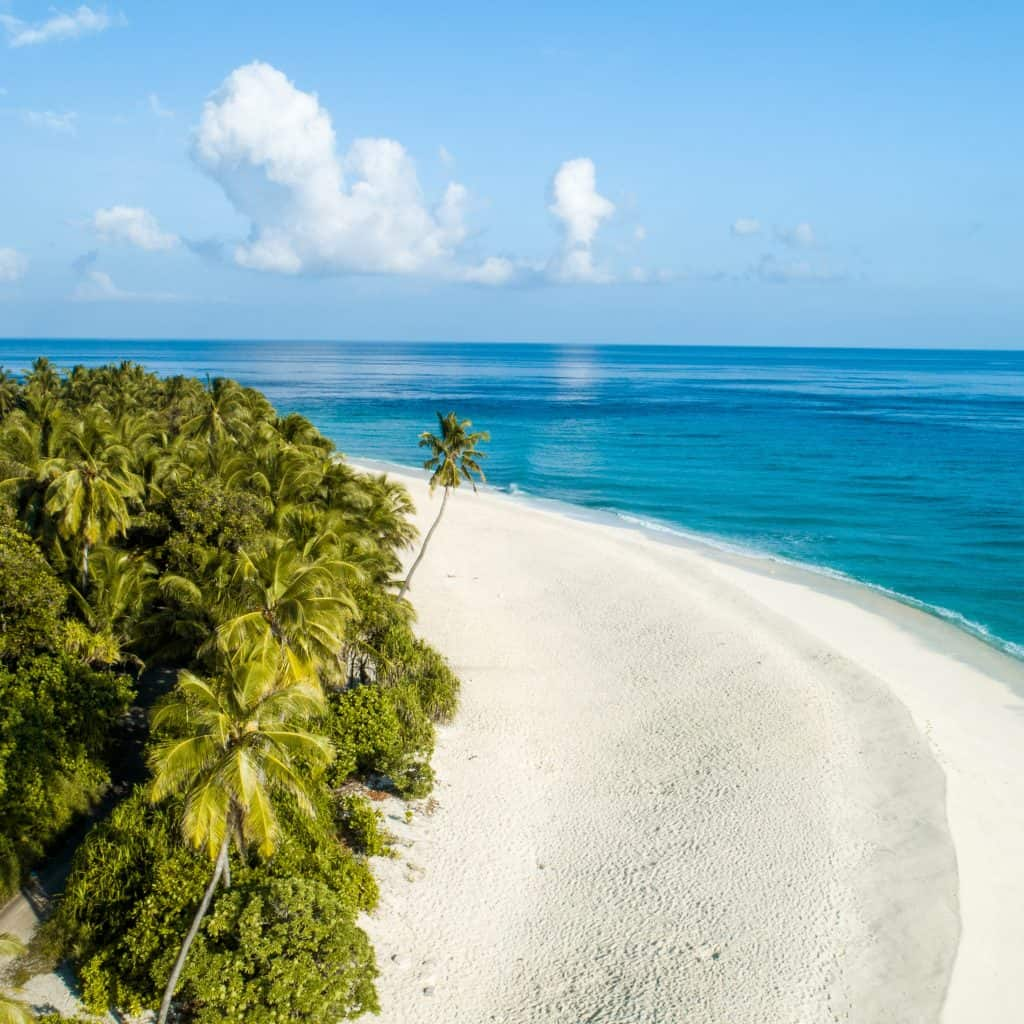 Tropical Island with white sandy beaches - The Caribbean on a Tall Ship Sailing Morgenster with Classic Sailing